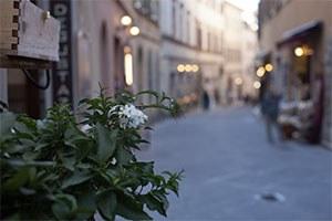 E-commerce, outlet e negozi, verso un testo unico delle norme in Emilia-Romagna