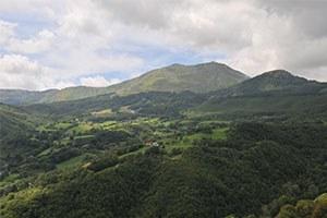 Taglio Irap per i comuni montani e del basso ferrarese, già accolte oltre 6mila richieste