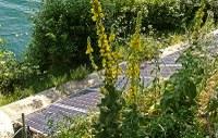 Enti locali, sistema della ricerca e imprese al lavoro su 11 progetti innovativi per l'economia verde