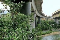 Sostegno agli autonomi coinvolti nella chiusura del viadotto Puleto
